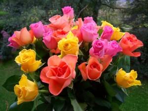 rose-bouquet-945329_1920
